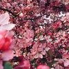 landonpberry